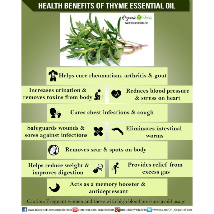 💯% Pure Cold-pressed Hemani Thyme Oil | Minyak Thyme [READY STOCK