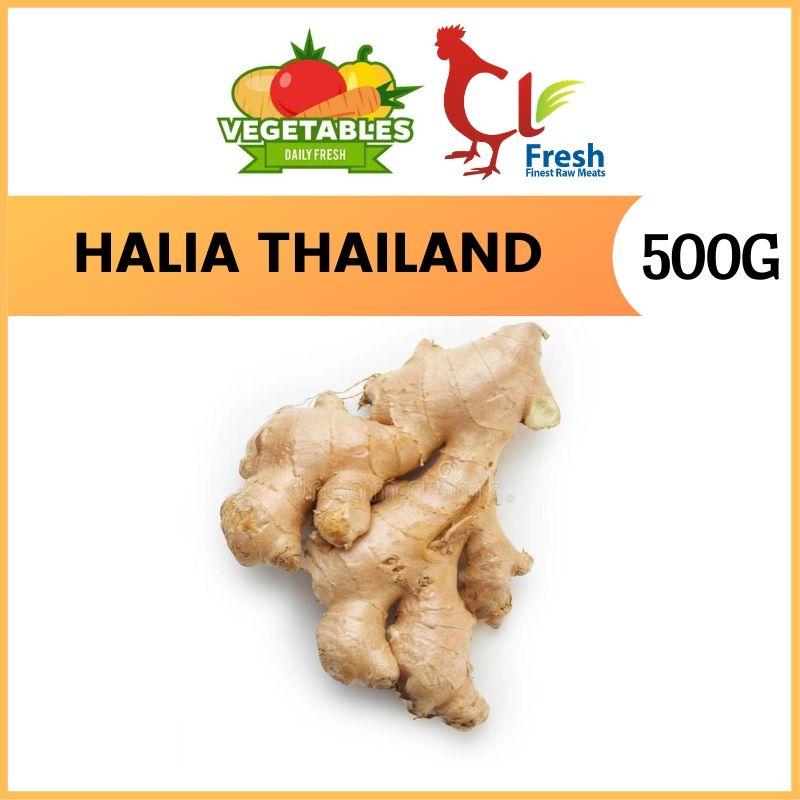 Halia Thailand / Ginger 500g