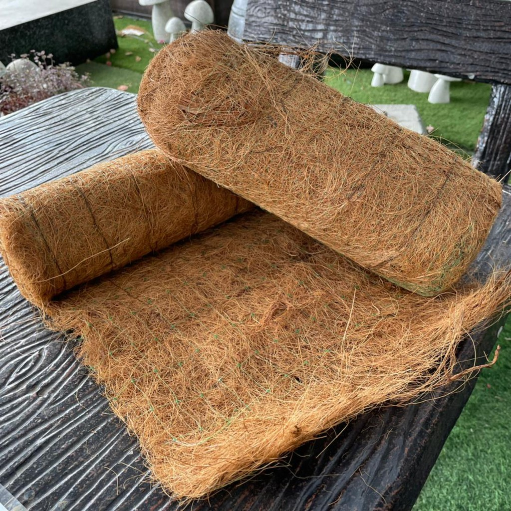 [IGL] Plant Wrap (100% coconut fiber) 2 in 1
