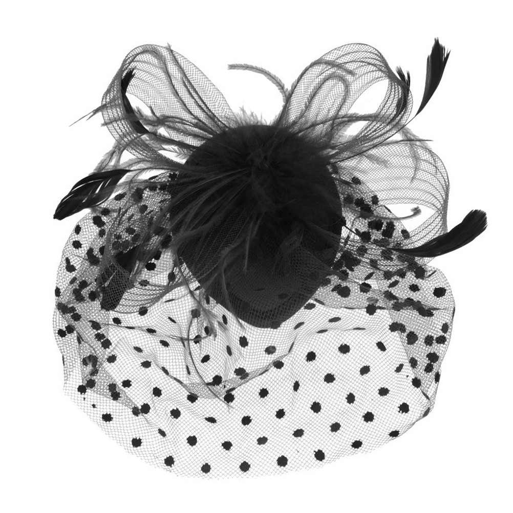 Chic Retro Style Bird Cage Mesh Bridal Face Veil Feather Fascinator Hair