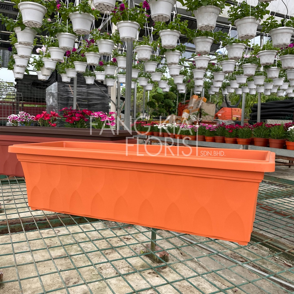 [IGL] Baba Pot / 528 Planter / Quality Plastic Pot / Planter Box