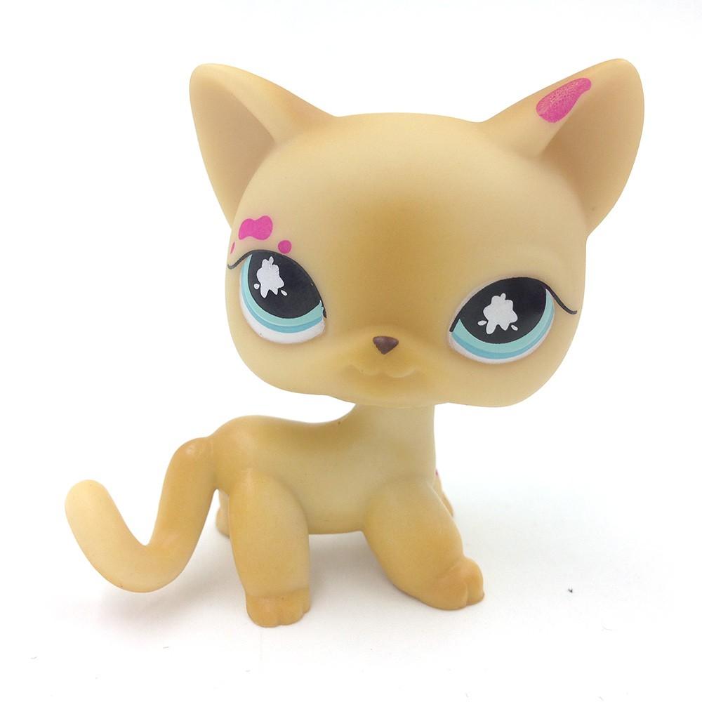Accessory Littlest Pet Shop Figure 816 LPS Gift Splatter Paint Short Hair Kitten