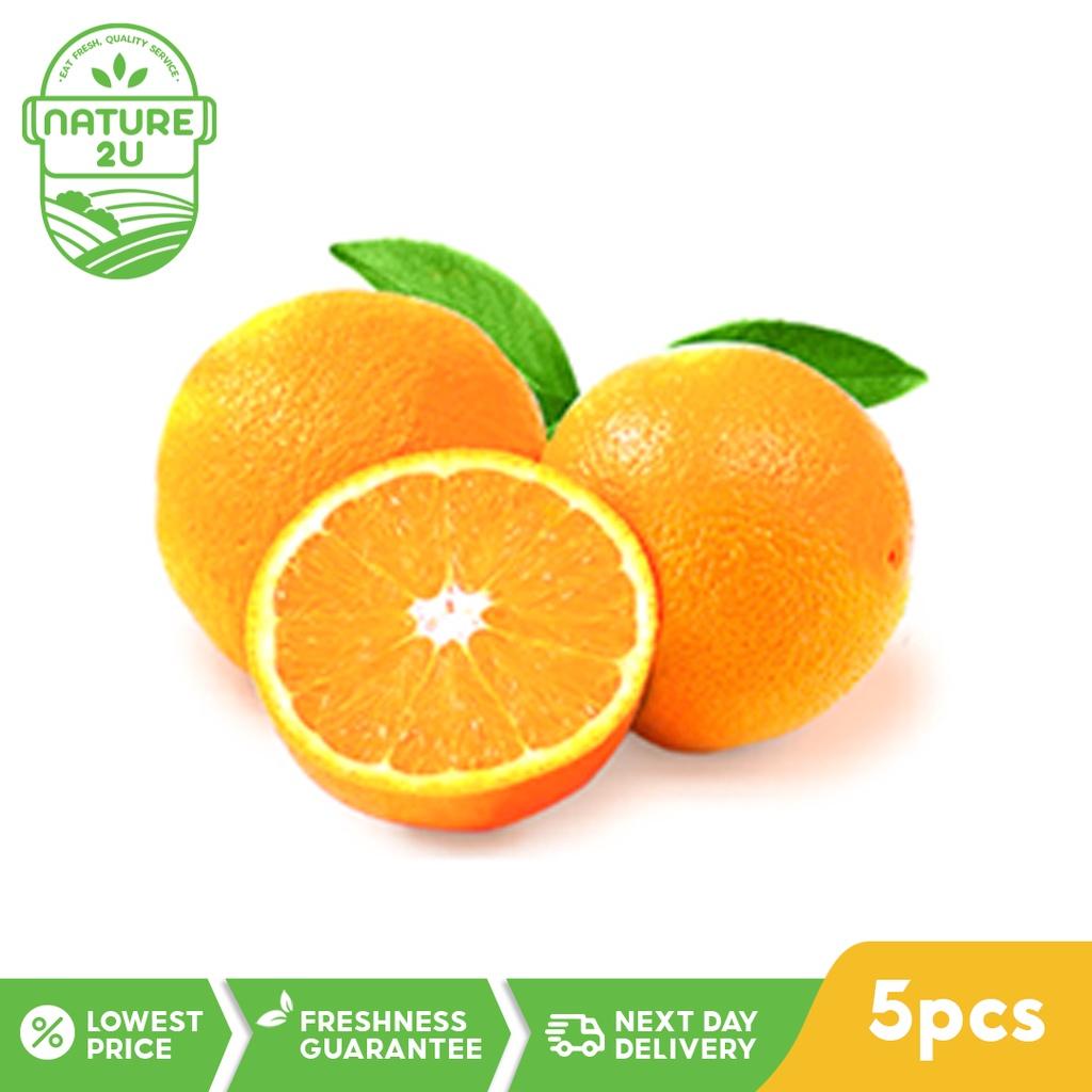 Fresh Fruit - Navel Orange (5PCS)