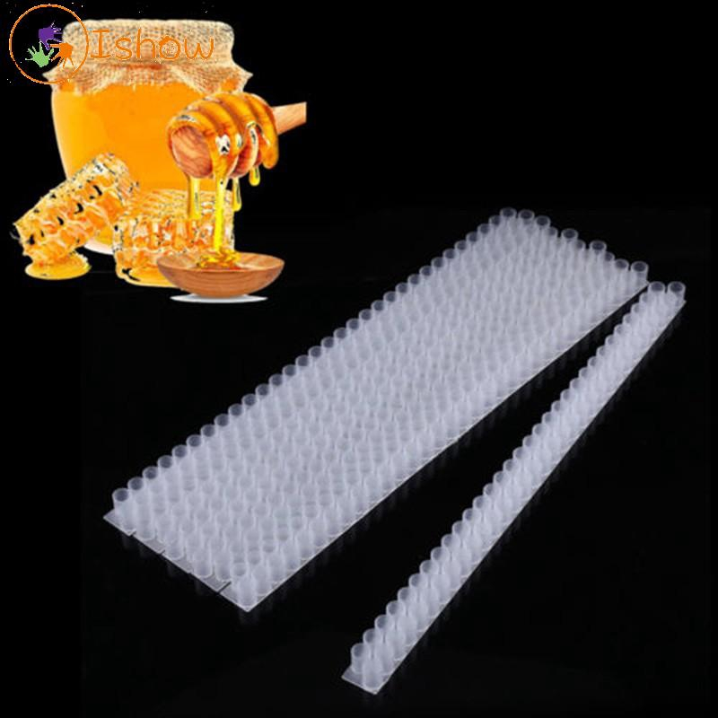 10pcs Queen Bee Cell Bar Strip Set Base for Beekeeping With Queen Cell Cups