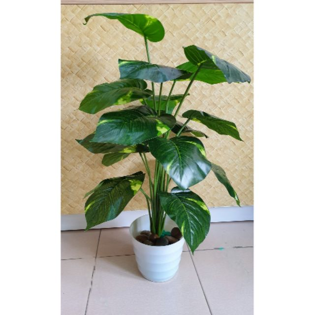 Pokok Hiasan Dengan Pasu Tinggi 80cm Decoration Tree With Vase Approx 80cm Height