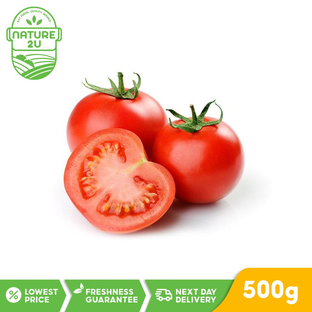 Fresh Vegetable - Tomato (500G+-/PKT)