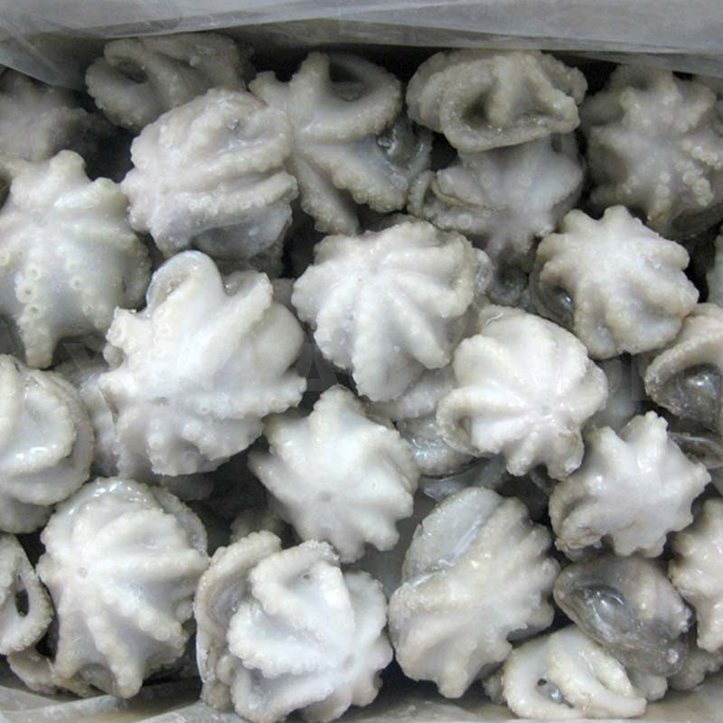 Baby Octopus - 400G Pack