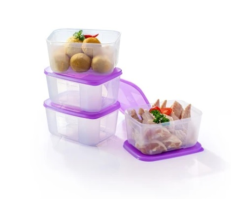 Bekas Makanan Sejuk Beku Tanpa Ais Tahan Lama Segar Tupperware FreezerMate (1) Small II (650ml)