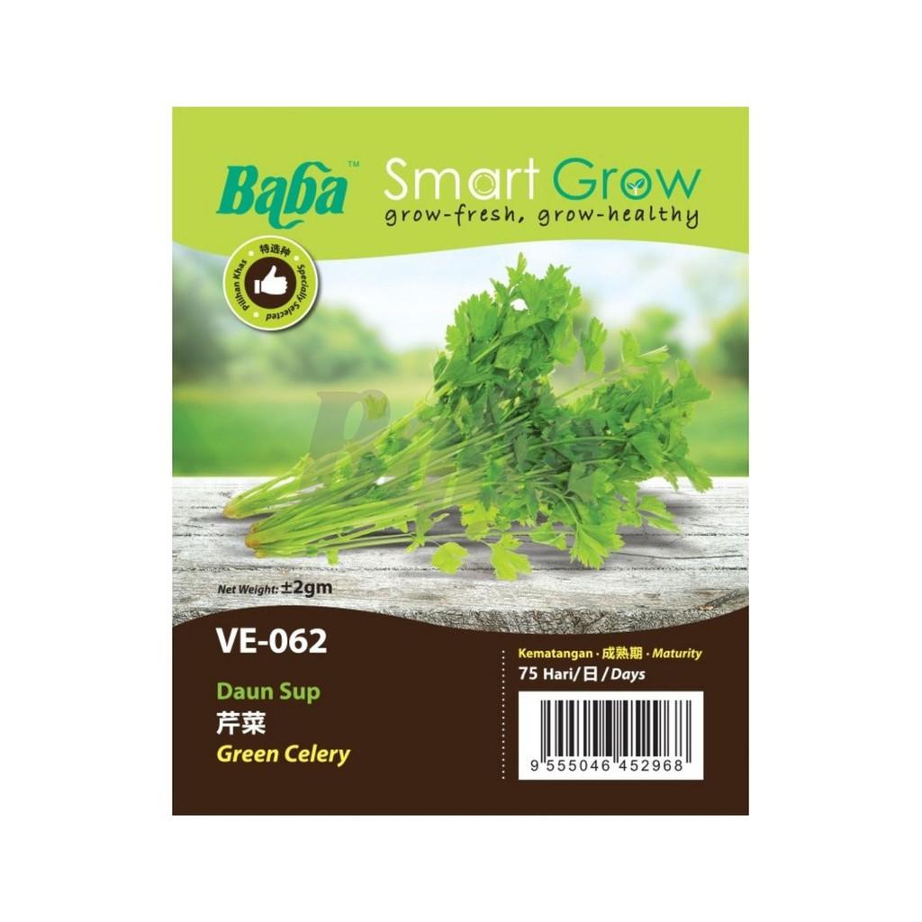 [IGL] BABA SMART GROW SEEDS / BIJI BENIH / VE-062 GREEN CELERY @ DAUN SUP