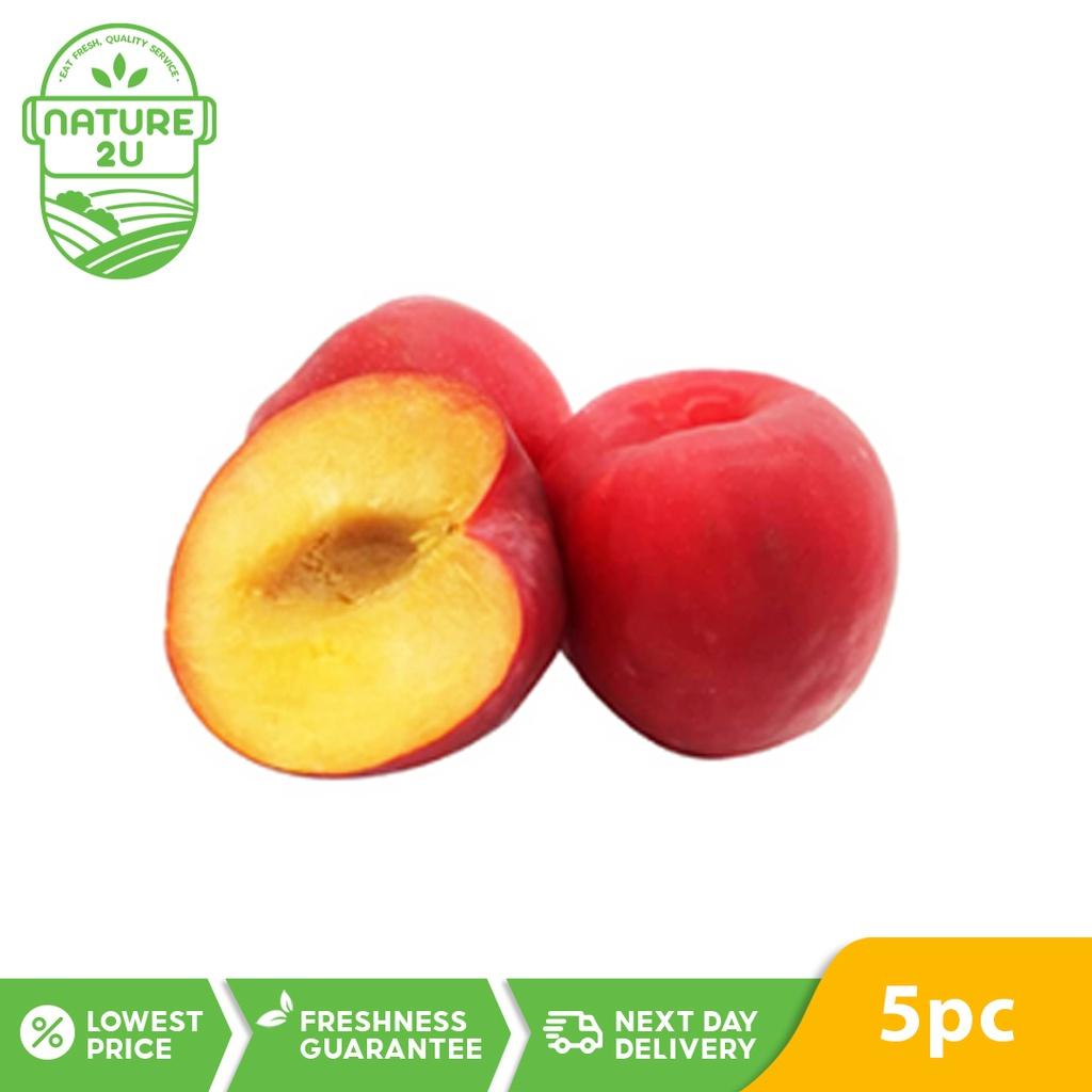 Fresh Fruit - Plum  (500G+-/PKT)