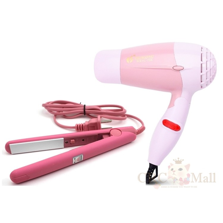 Travel Portable Hair Straightener and Hair Dryer 2-In-1 Set
