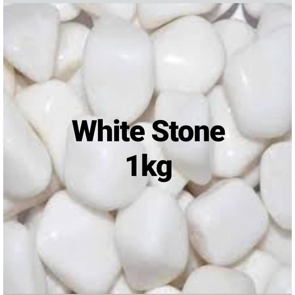 WHITE STONE AQUARIUM DÉCOR 1KG