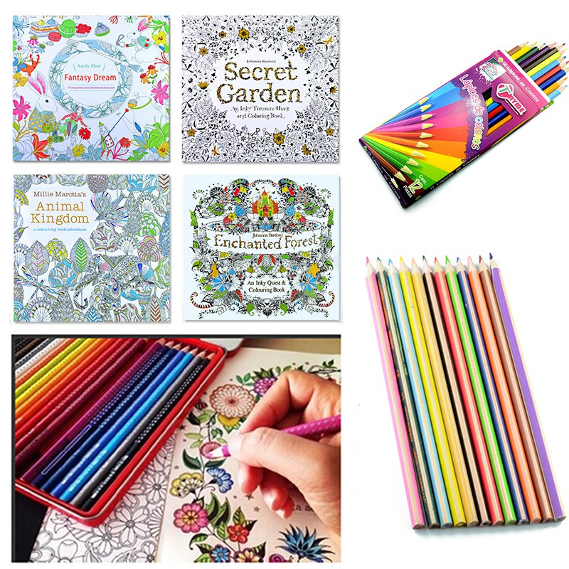 Set Of 4 Secret Garden Childrens Picture Book Hand Drawing 12 Color Lead