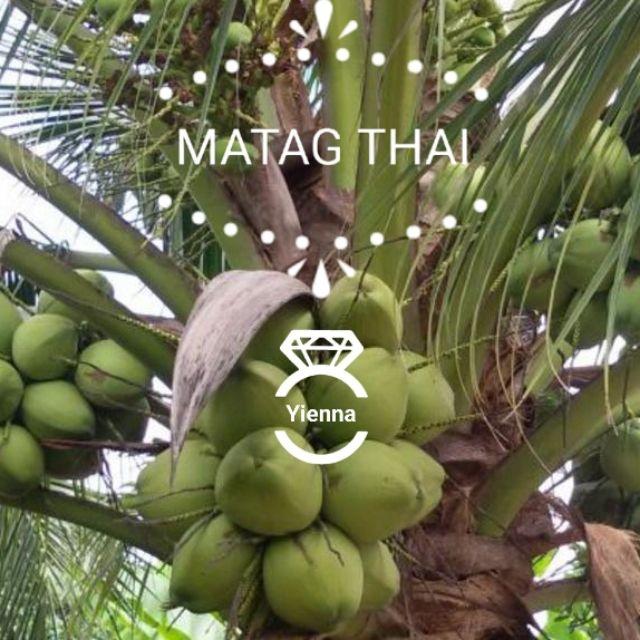 matag coconut malaysia