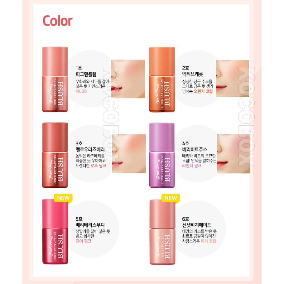 Skin Food Fresh Fruit Juice Extraction Blush 6color 7ml Korean Cosmetic Shopee Malaysia
