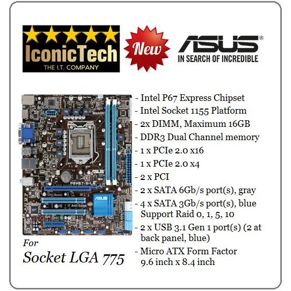 ASUS P8H61-M LE Socket LGA 1155 Intel P67 Micro ATX Motherboard (New-Bulk  Pack)