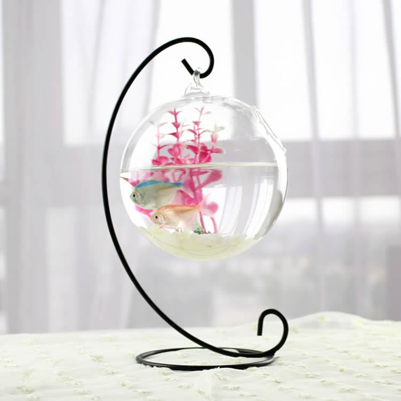 Terrarium Ball Globe Shape Clear Hanging Glass Vase Flower Planter Pots Wall Fish Tank Aquarium Container Homw Decor Shopee Malaysia