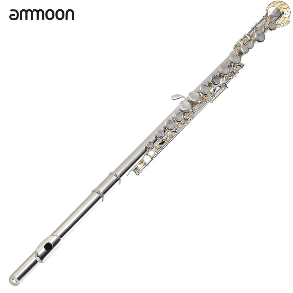 Musical Instruments Band & Orchestra Silver ammoon Flute ...
