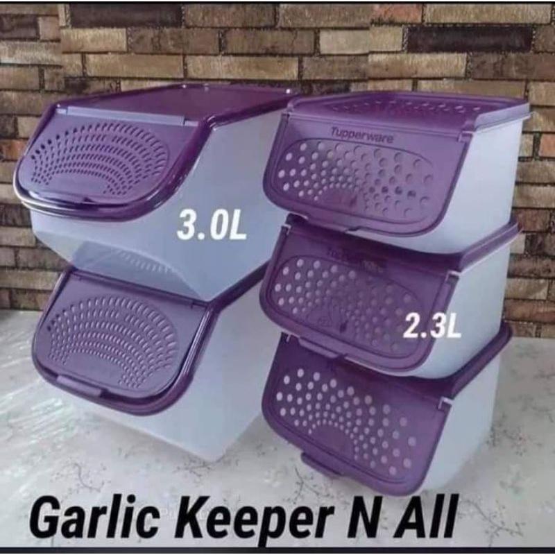 Garlic Keeper n All 3.0L 2.3L Tupperware Brands ungu purple bekas simpan bawang