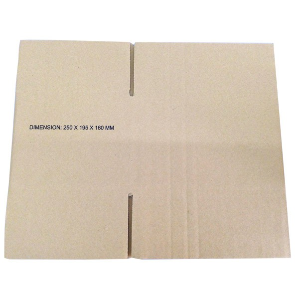 (250mm x 195mm x 160mm, Set of 5) Small Single Wall Carton Box for Packing