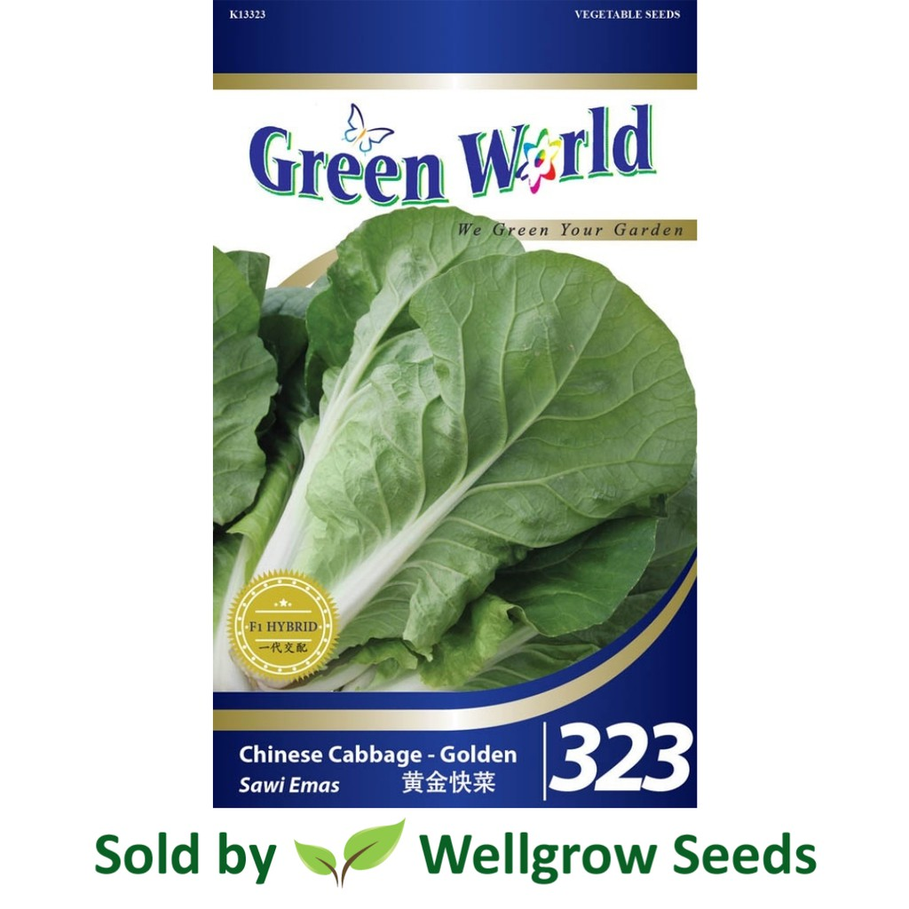 Green World Tatsoi Vitamin Wealthy 200 Seeds 维生素丰富的塌棵菜