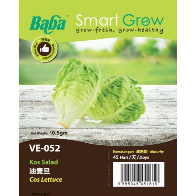 [IGL] BABA SMART GROW SEEDS / BIJI BENIH / VE-052 COS LETTUCE @ KOS SALAD