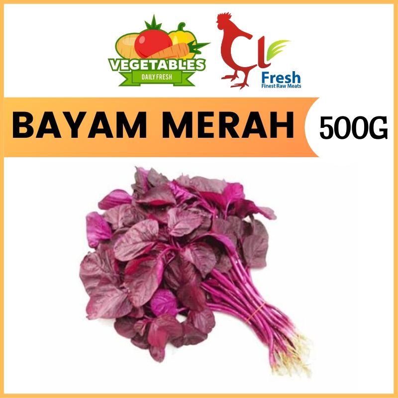 Bayam Merah / Red Spinach (500g)