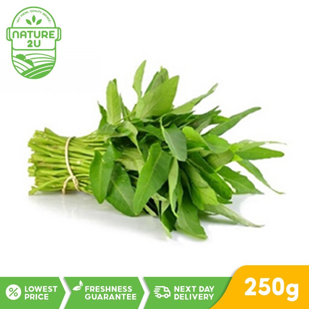 Fresh Vegetable - Water Spinach / KangKong (250G)