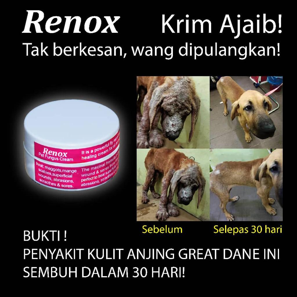 RENOX Pet Fungus Cream 5g, Krim Kurap, Fungus, Luka utk menyubuhkan luka haiwan