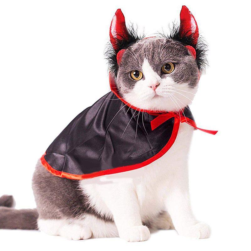 Christmas Pet Costumes.Cat Costume Christmas Pet Costumes Cat Cape Hat Pet Cape Cat Halloween Costume Pet Apparel For