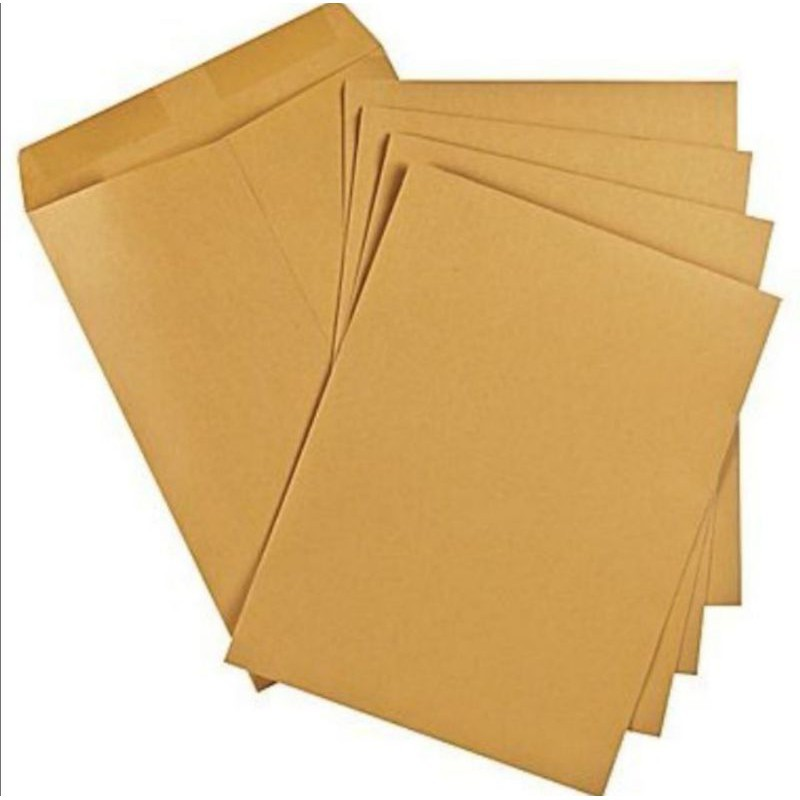 """A4 Size White or Brown Document Envelope 9""""×12.75"""" (228mm x 323mm)"""