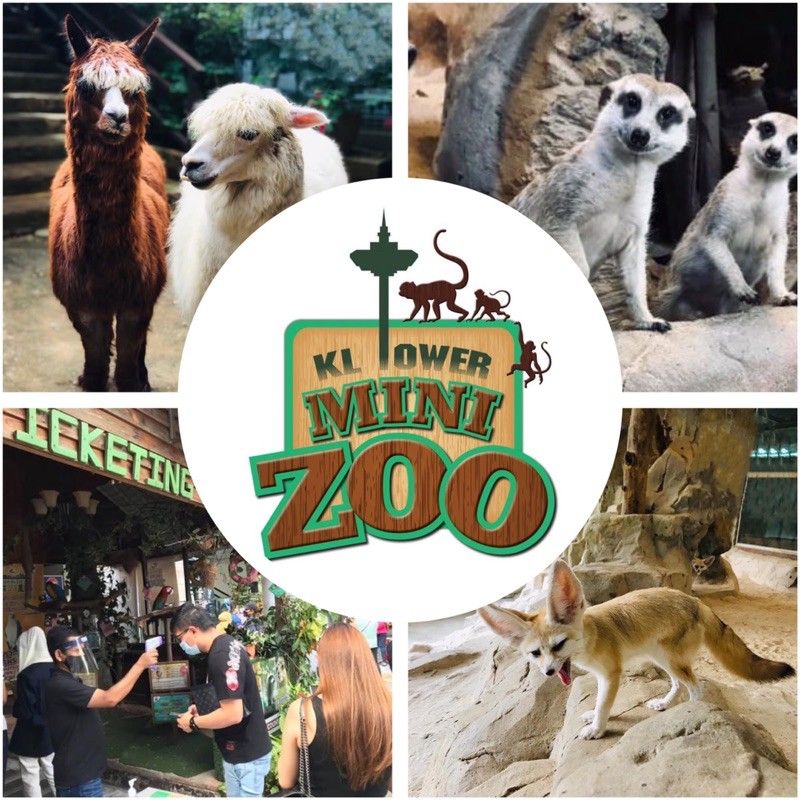 KL TOWER MINI ZOO attraction ticket and vouchers | Shopee Malaysia