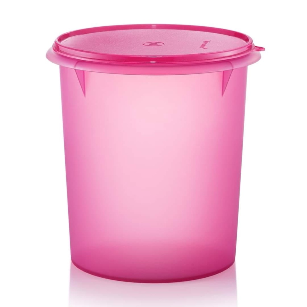 (OFFER August 2021) Tupperware Fortune Blooms GIANT Canister 8.6Lx1