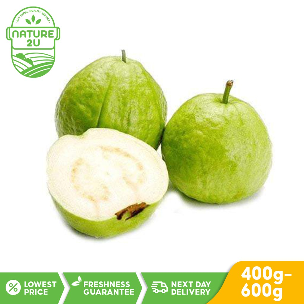Fresh Fruit - Malaysia Crystal Guava (400G-600g)