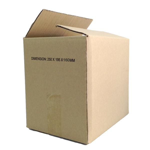 (250mm x 195mm x 160mm, Set of 10) Small Single Wall Carton Box for Packing