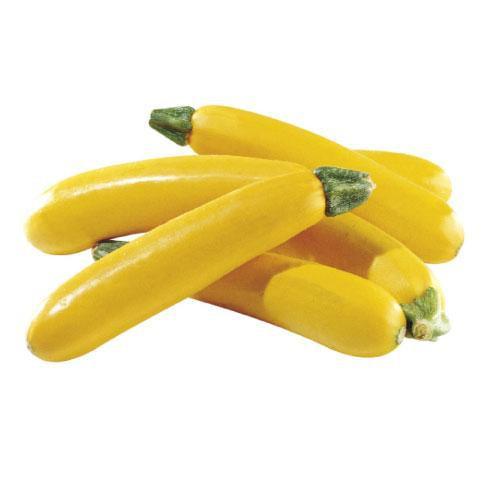 Zucchini Yellow (200G/PKT)