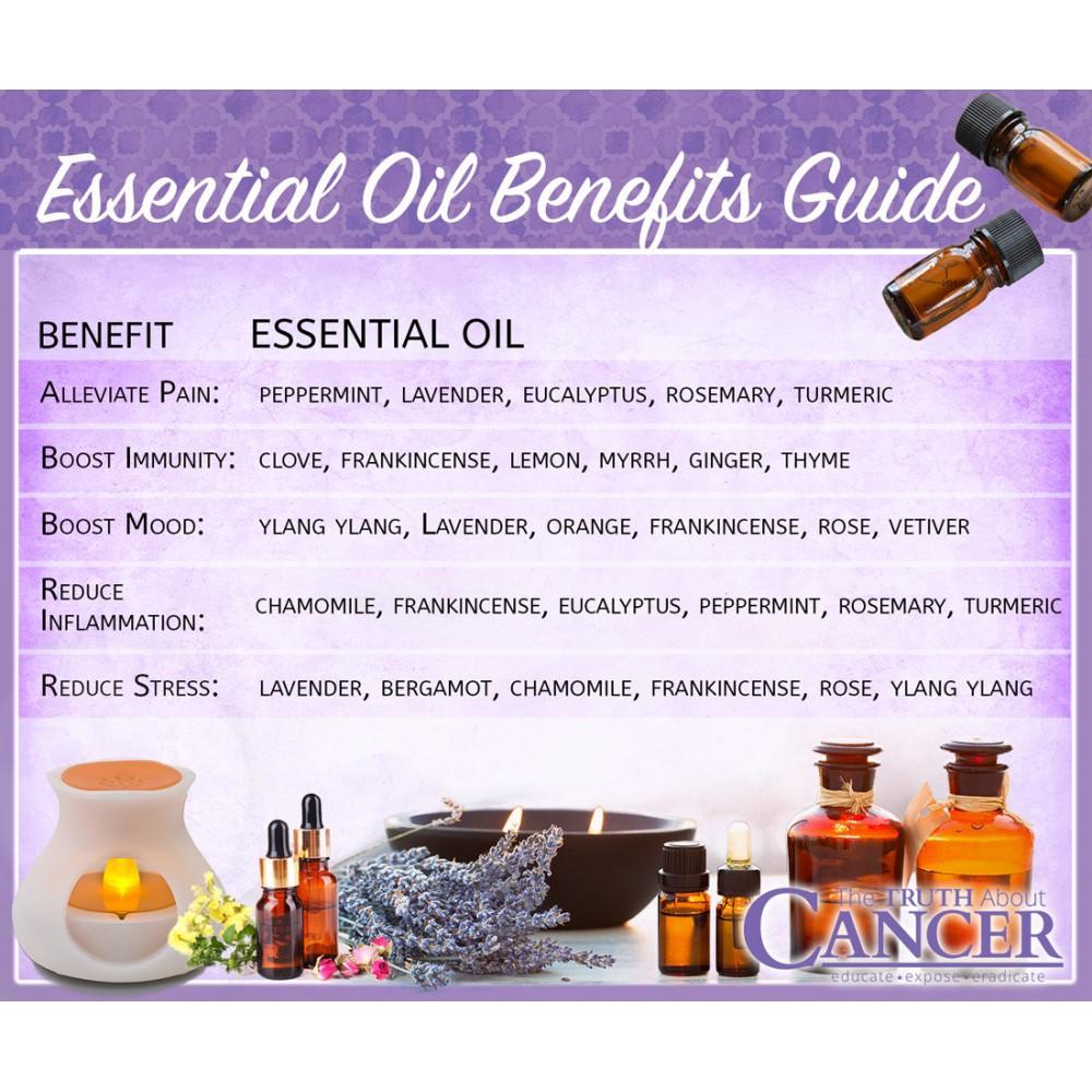 薑精油 GINGER Essential Oil 10ml